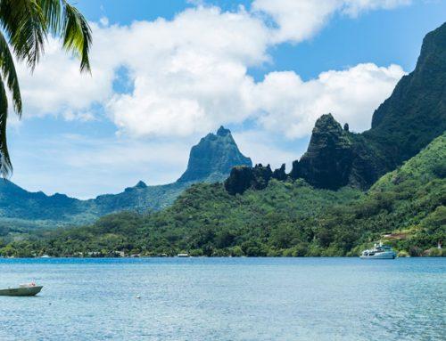 Экскурсионные туры на острове Муреа-чем заняться на острове