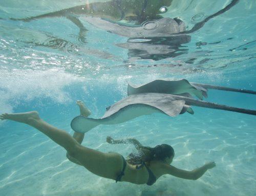 Французская Полинезия. Отдых на воде