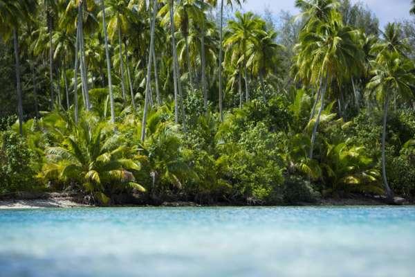 Moorea island, lagoon